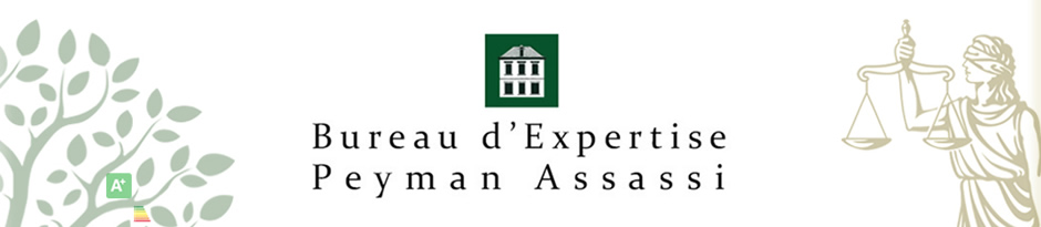 Bureau d'Expertise Peyman Assassi